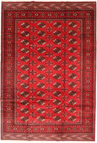 Turkaman Χαλι 201X293 Ανατολής Χειροποιητο Στο Χρώμα Της Σκουριάς/Σκούρο Κόκκινο/Kόκκινα (Μαλλί, Περσικά/Ιρανικά)