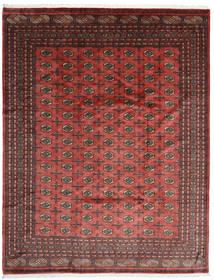 Pakistan Μπουχαρα 3Ply Χαλι 250X322 Ανατολής Χειροποιητο Σκούρο Κόκκινο/Σκούρο Καφέ Μεγαλα (Μαλλί, Πακιστανικά)