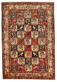 Bakhtiar Collectible Χαλι 212X311 Ανατολής Χειροποιητο Σκούρο Κόκκινο/Σκούρο Καφέ (Μαλλί, Περσικά/Ιρανικά)